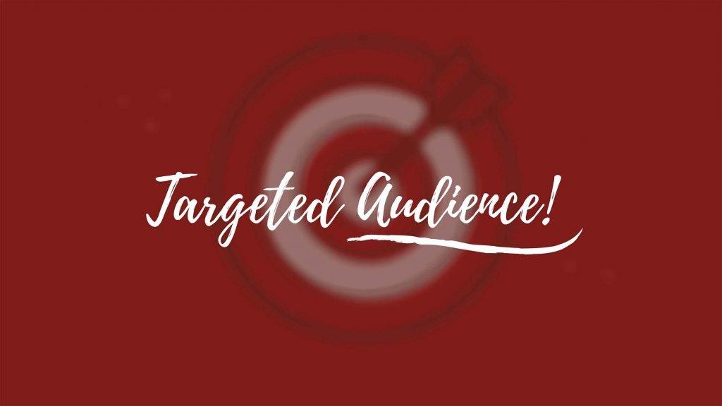 Targeted Audience - Freelancers Hub